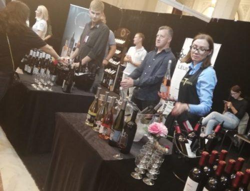 Wine & Food Street Festival – ediția de toamnă